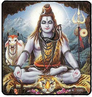 Shiva Kamadhenou
