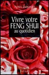 livre feng shui de lilian too symbole amour r ussite sant richesse fortune achat vente. Black Bedroom Furniture Sets. Home Design Ideas