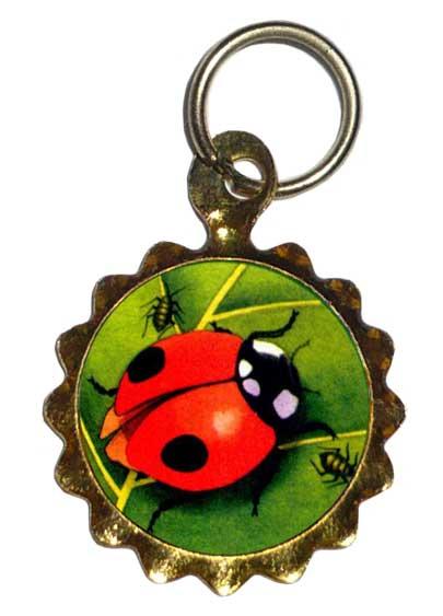 Porte Bonheur Et Idee Cadeau Gris Gris Amulette Talisman Rose De